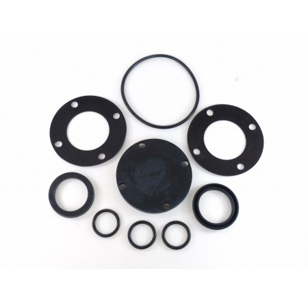 RMS valve repair kit