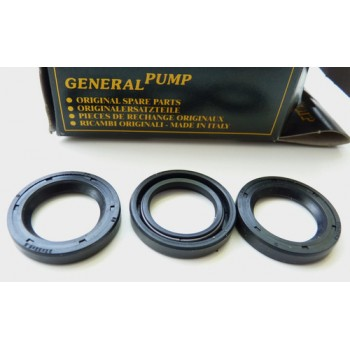 Interpump kit no.2 : Oil seals